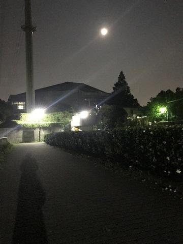 満月の下を♪_f0242002_11184302.jpg