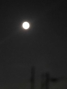 満月の下を♪_f0242002_11194575.jpg