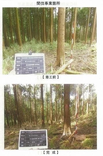 今年は内山財産、須津山財産等の統合の年! 内山財産の管内視察_f0141310_08120801.jpg