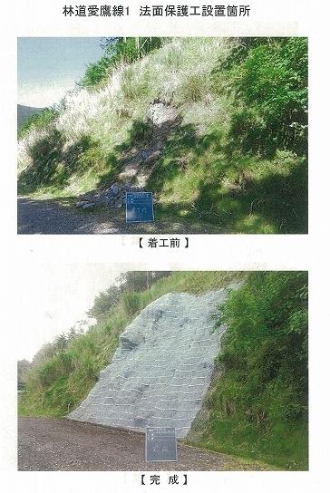今年は内山財産、須津山財産等の統合の年! 内山財産の管内視察_f0141310_08142181.jpg