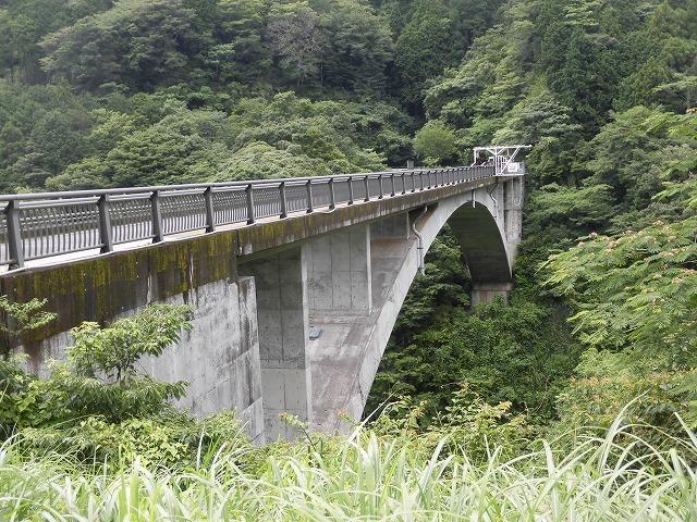 今年は内山財産、須津山財産等の統合の年! 内山財産の管内視察_f0141310_08183376.jpg