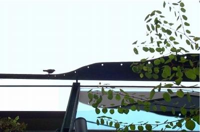 魅力あふれるバルコニー・・・スチールのデザイン手摺_e0010418_11021737.jpg
