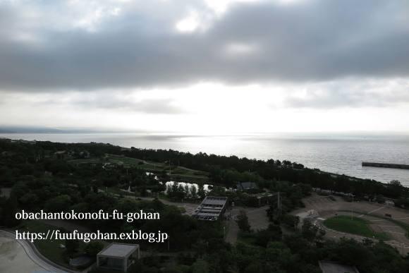 のんびりな朝の湯葉うどん&淡路島ランチ_c0326245_11434838.jpg