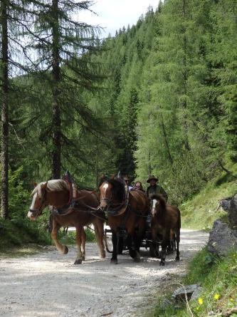 ヴァッレス峠からセガンティーニ小屋へ。_f0161652_15510516.jpg