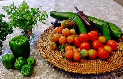 家庭菜園のお野菜、収穫中♪_b0194861_12544658.jpg