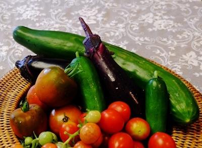 家庭菜園のお野菜、収穫中♪_b0194861_12572759.jpg