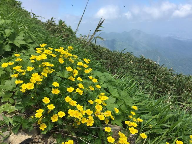 """2019年7月 『青春の思い出 ー 芦別岳 1726m』 July 2019 \""""Mt Ashibetsu, my sentimental mountain\""""_c0219616_19031056.jpg"""