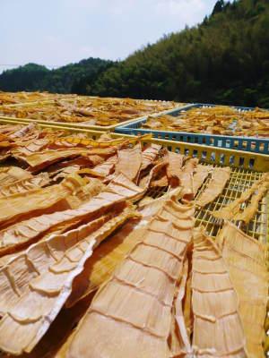 干したけのこ 自家製メンマを作ってみませんか?そして熊本のお盆にはコレ!棒鱈と干したけのこの煮物!!_a0254656_16572512.jpg