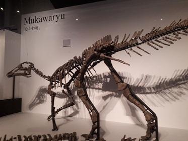 『恐竜博2019』_e0033570_11235472.jpg