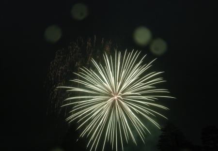 霧雨と大輪の花々のコラボ @会津若松鶴城地区花火大会_c0141989_01540288.jpg