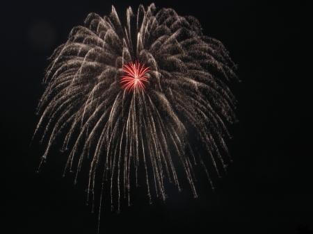霧雨と大輪の花々のコラボ @会津若松鶴城地区花火大会_c0141989_01544720.jpg
