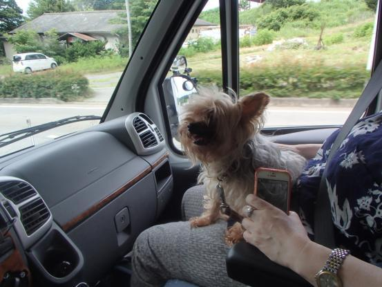 カタツムリ号で一緒にプチドライブを_f0064906_16072674.jpg