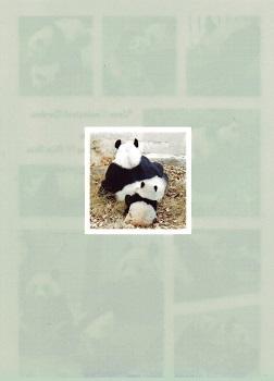 上野動物園のパンダ_a0116217_01171341.jpg