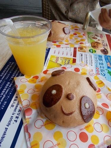 上野動物園のパンダ_a0116217_01484366.jpg