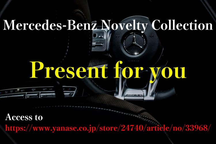 貰える Mercedes-Benz ノベルティーグッズ 詰め合わせ_a0070118_13023379.jpg