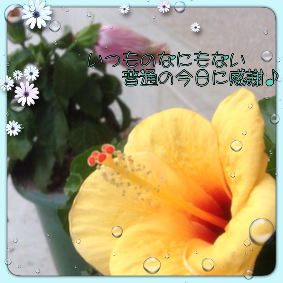 b0166327_07063879.jpg
