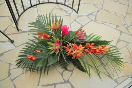 7月のNHK文化センター普通科の花は「フラット」_f0185066_08130763.jpg