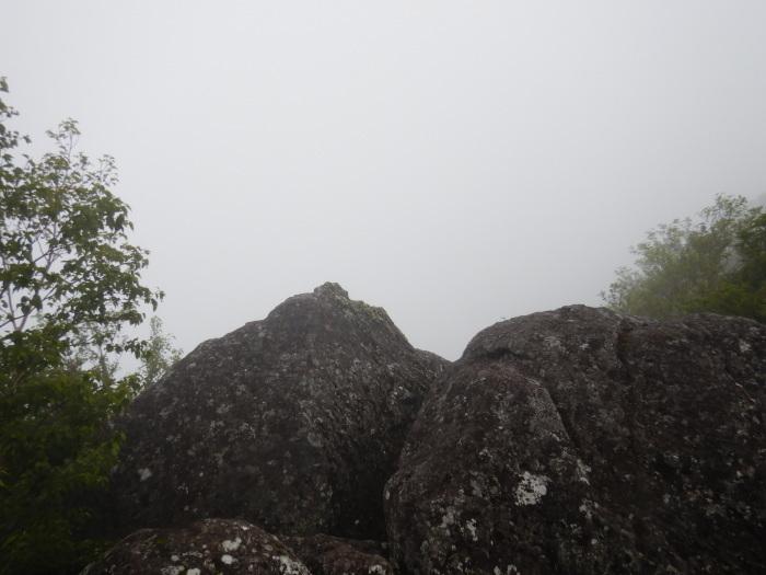 蔵王・後烏帽子岳 ~ 2019年7月20日_f0170180_21590522.jpg