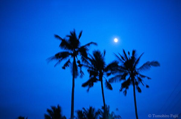 バリ島にて_c0030685_23053468.jpg