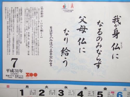宇部鴻城 7年ぶりの甲子園出場_b0398201_10431608.jpg