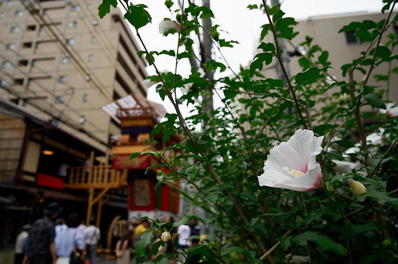 2019祇園祭後祭・山鉾建て 其の一_f0032011_20151068.jpg