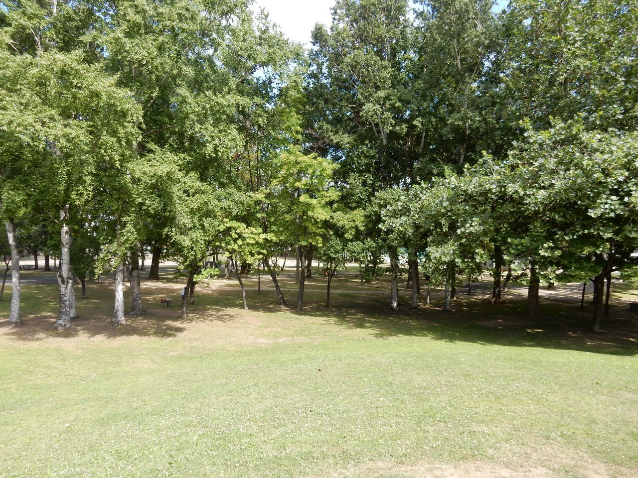 美香保公園の山には高射砲の台座が埋まっている_c0025115_23334574.jpg