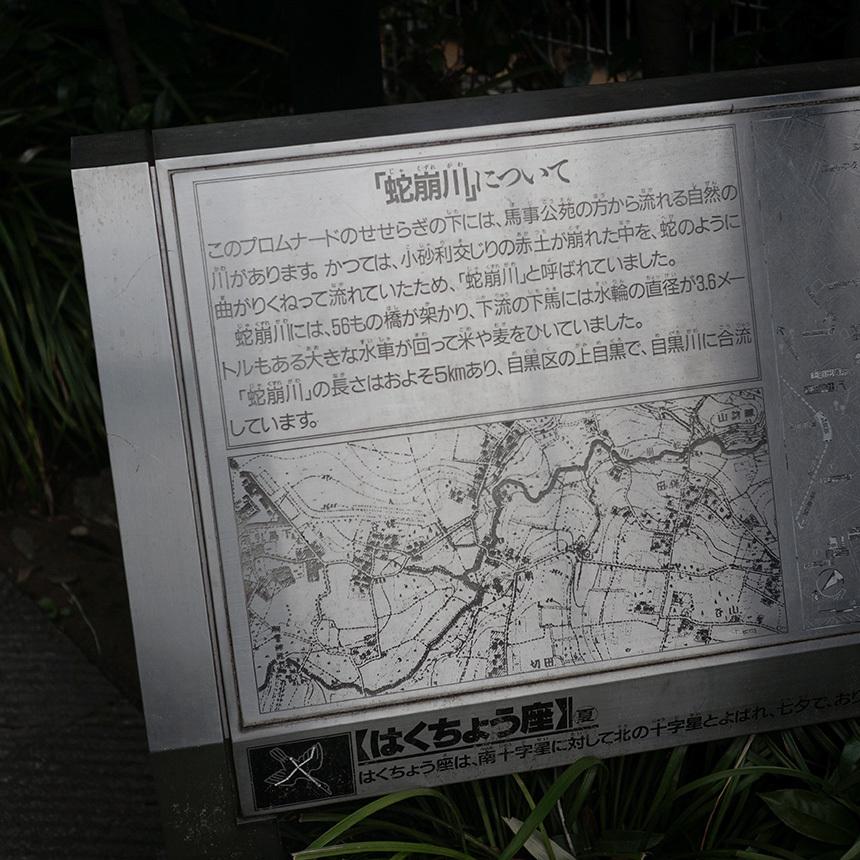 万能レンズで歩く蛇崩川 その-壱_b0058021_22123099.jpg