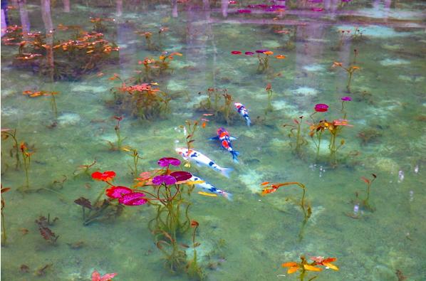 美しいモネの絵のような池_e0295926_08243681.png