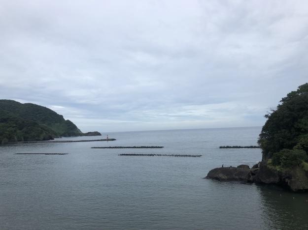 西伊豆で講習ツアー お魚いっぱい見て食べて~♪     雲見・田子 西伊豆_e0184067_15581550.jpeg
