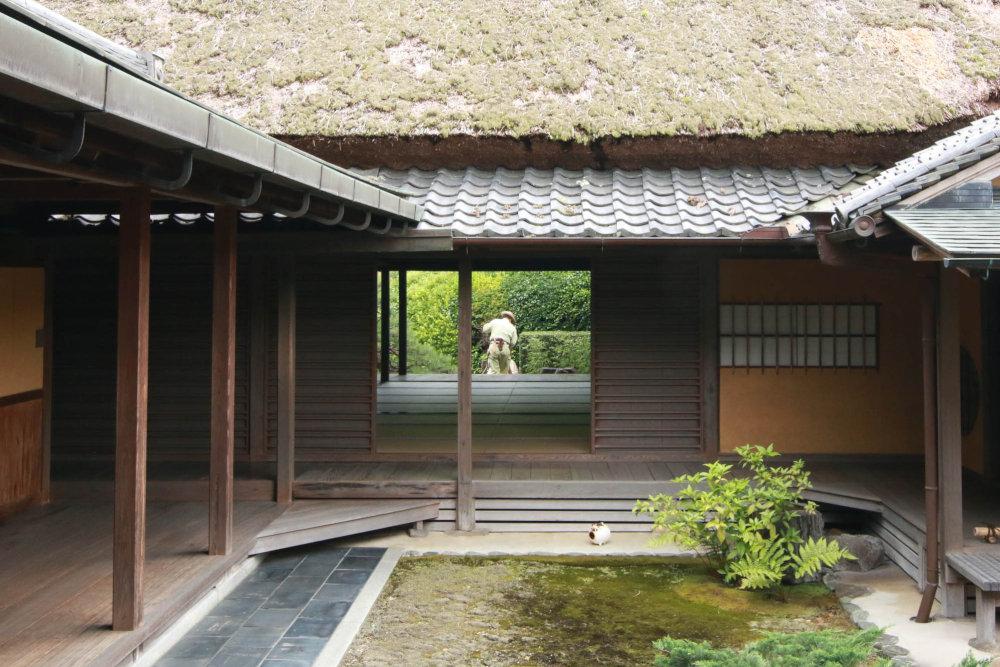 再訪 奈良の慈光院_b0349892_06345885.jpg