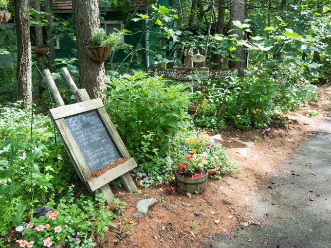 カフェから見える理想的な場所に「クレマチス」が咲いたのですが・・_f0276498_22042831.jpg