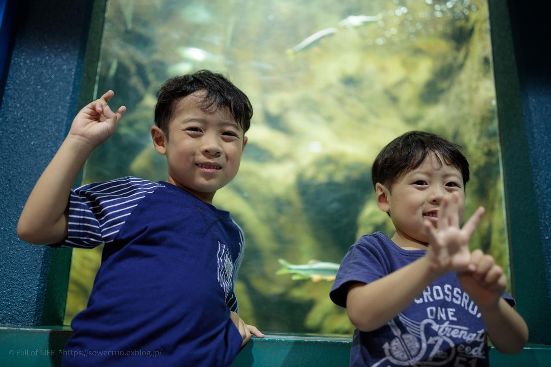 ちびっ子兄弟夏休みに突入!「さいたま水族館」へGo!_c0369219_13381107.jpg