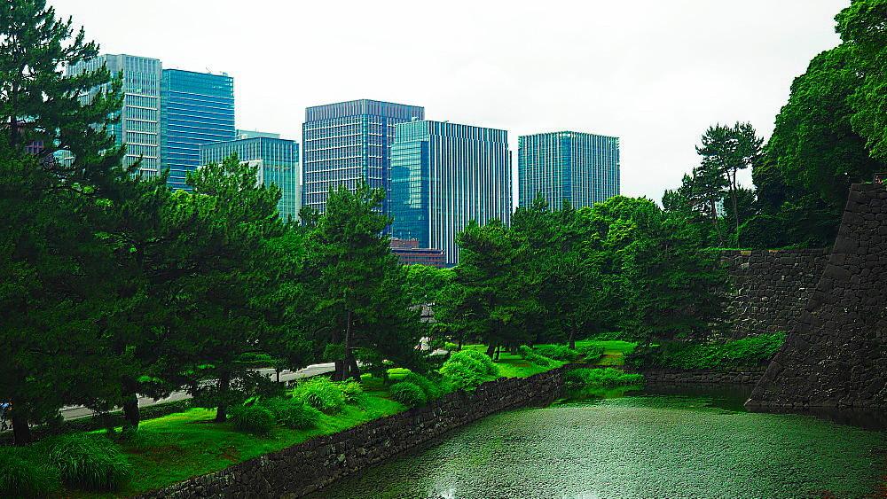 江戸城 石垣と丸ノ内ビル群_a0287533_22012641.jpg