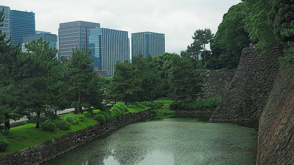 江戸城 石垣と丸ノ内ビル群_a0287533_22012693.jpg
