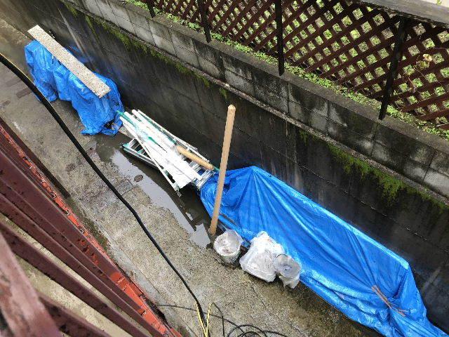 梅雨の合間に_f0031037_19173630.jpg
