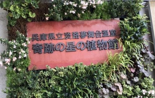 奇跡の星の植物園_c0335145_14100053.jpeg