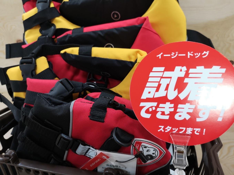 今シーズン最後のカヌー試乗会は8月25日(日)!_d0198793_13184852.jpg