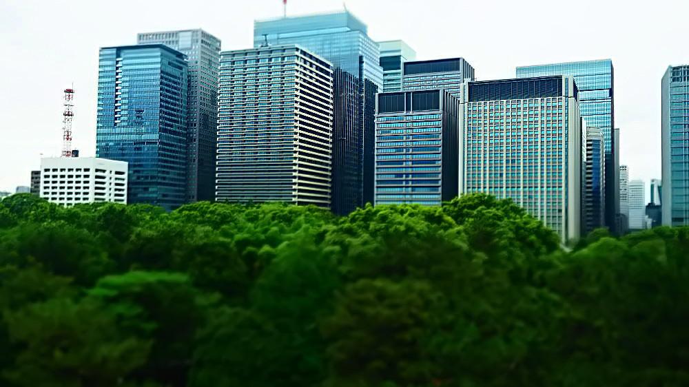 皇居の緑と丸ノ内ビル群 Ⅱ_a0287533_21162764.jpg