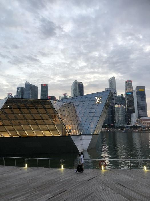 シンガポールの素敵な夜景に癒されて_b0310144_11334658.jpeg