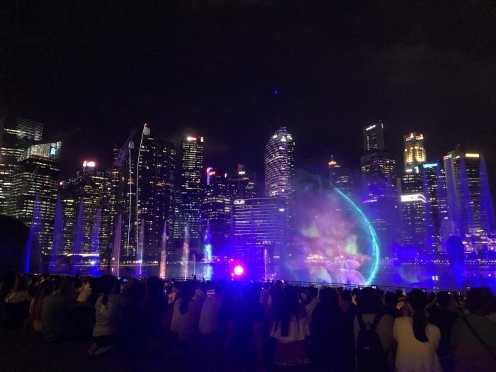 シンガポールの素敵な夜景に癒されて_b0310144_11354049.jpeg