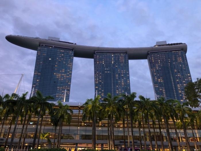 シンガポールの素敵な夜景に癒されて_b0310144_11361587.jpeg