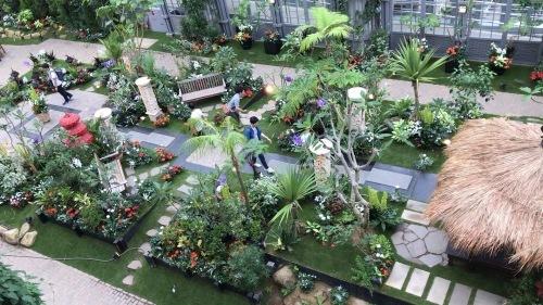 奇跡の星の植物園_c0335145_21493608.jpeg