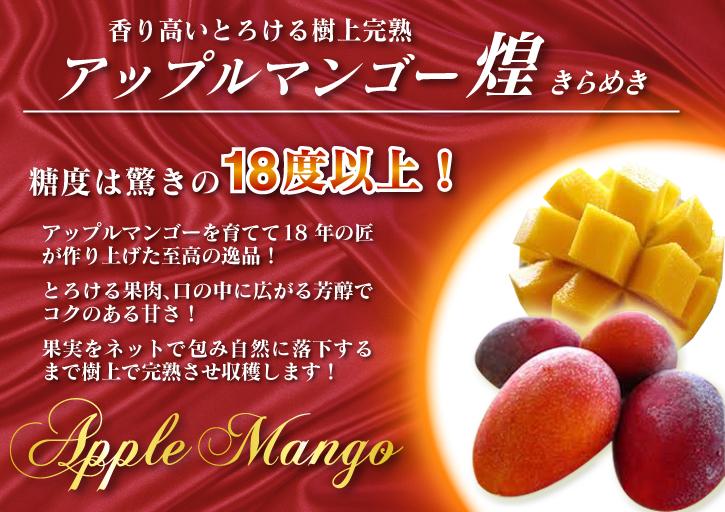 樹上完熟アップルマンゴー 最高級の「煌」&お求めやすいファミリータイプ 最盛期を迎え随時出荷中!_a0254656_17083600.jpg