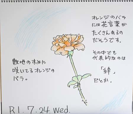 オレンジのバラ_b0364195_09214048.jpg