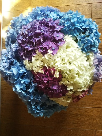 ベリーと紫陽花ポンポン、動画も撮ったよ^^_f0316507_19240104.jpg