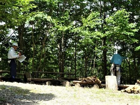 みんなの森活動日記_d0105723_09334682.jpg