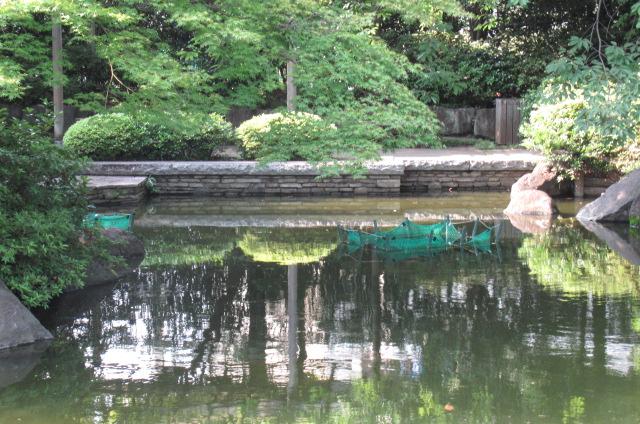 足立区郷土博物館で開催中の日本画「すごい絵」。_a0214329_1821320.jpg