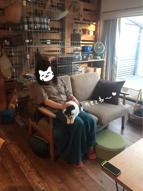 yoikoさんが遊びに来てくれました。_b0223446_16532257.jpg