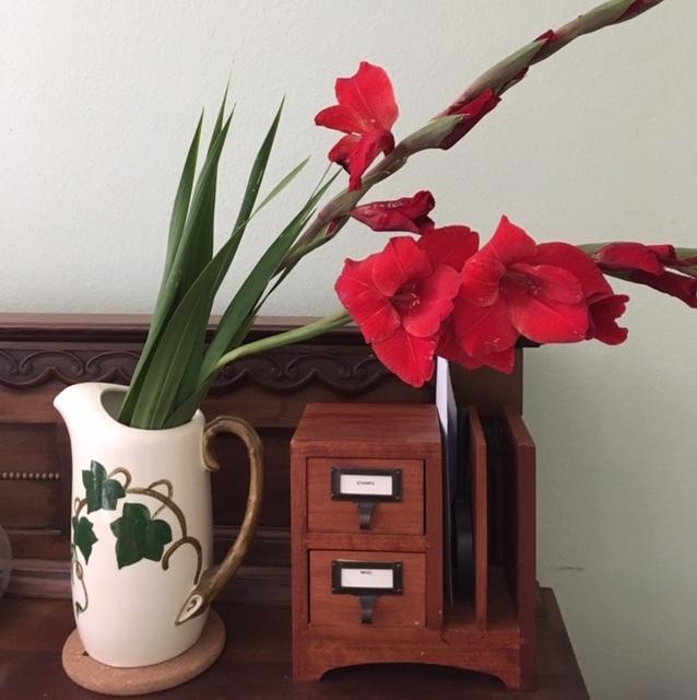 最近の花たちーグラジオラス、ダリア、トルコ桔梗などなど_e0350971_07283556.jpg