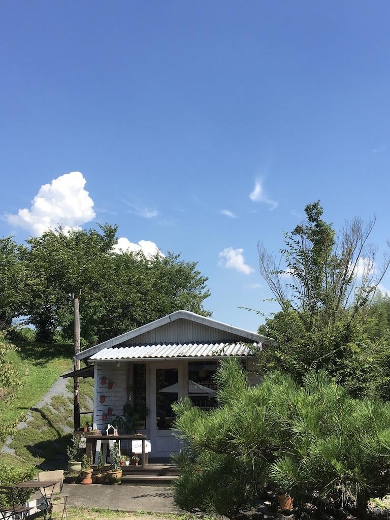 リネンのハットの出番です。〜ようやく梅雨明け〜_c0334574_16132585.jpg